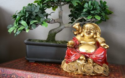 Soška Buddhy od nákupu po umístění